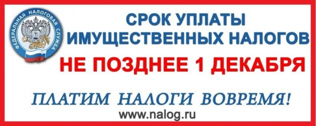 NRbf327cd1030f86bacfbddcea1a026d69.jpg
